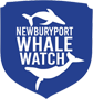 Newburyport Whale Watch